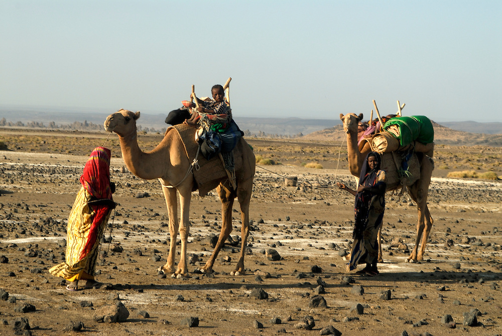Camelcarawan with Afarbedouinenwomen,Djibouti