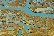 In the Dalyan Delta in Turkey the river artfully creates patterns of water and reed before reaching the beachfront to the open Mediterranean Sea. The brackish water is home of the Nile soft-shelled turtle (Trionyx triunguis).
