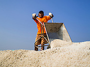 09 MARCH 2015 - NA KHOK, SAMUT SAKHON, THAILAND: A worker on a salt farm unloads a wheelbarrow of sea salt on a mound of salt in Samut Sakhon, Thailand. The coastal provinces of Samut Sakhon and Samut Songkhram, about 60 miles from Bangkok, are the center of Thailand's sea salt industry. Salt farmers harvest salt from the waters of the Gulf of Siam by flooding fields and then letting them dry through evaporation, leaving a crust of salt behind. Salt is harvested through dry season, usually February to April. The 2014 salt harvest went well into May because the dry season lasted longer than normal. Last year's harvest resulted in a surplus of salt, driving prices down. Some warehouses are still storing salt from last year. It's been very dry so far this year and the 2015 harvest is running ahead of last year's bumper crop. One salt farmer said prices are down about 15 percent from last year.    PHOTO BY JACK KURTZ