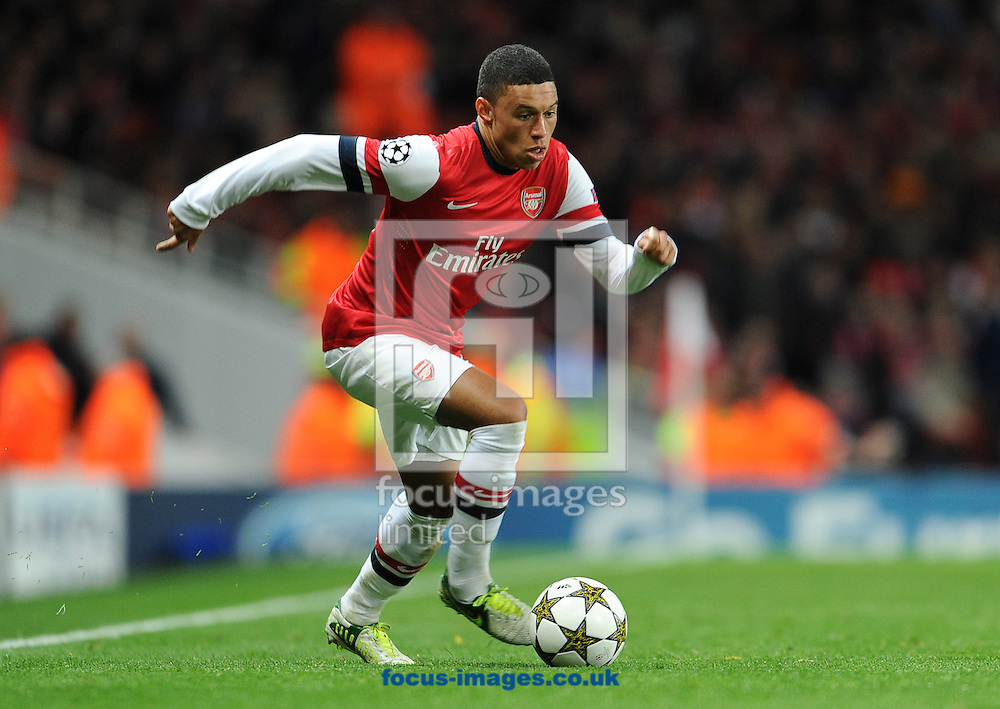 Picture by Andrew Timms/Focus Images Ltd +44 7917 236526.21/11/2012.Alex Oxlade-Chamberlain of Arsenal during the UEFA Champions League match against Montpellier at the Emirates Stadium, London.