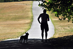 © Licensed to London News Pictures. 01/08/2018<br /> Greenwich, UK. A dog walker shelters in the shade on Greenwich Park, as a heatwave is set to return to the UK. Photo credit: Grant Falvey/LNP