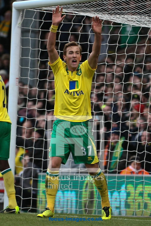 Picture by David Horn/Focus Images Ltd +44 7545 970036.26/01/2013.Harry Kane of Norwich City appeals unsuccessfully with the Assistant Referee that the ball crossed the line during the The FA Cup match at Carrow Road, Norwich.