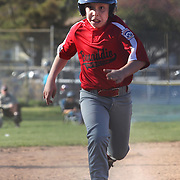 A young baseball player runs hard towards home plate e during the Norwalk Little League baseball competition at Broad River Fields,  Norwalk, Connecticut. USA. Photo Tim Clayton