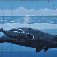 Alaska's Marine Life Mural by Wyland in Anchorage, Alaska<br />
