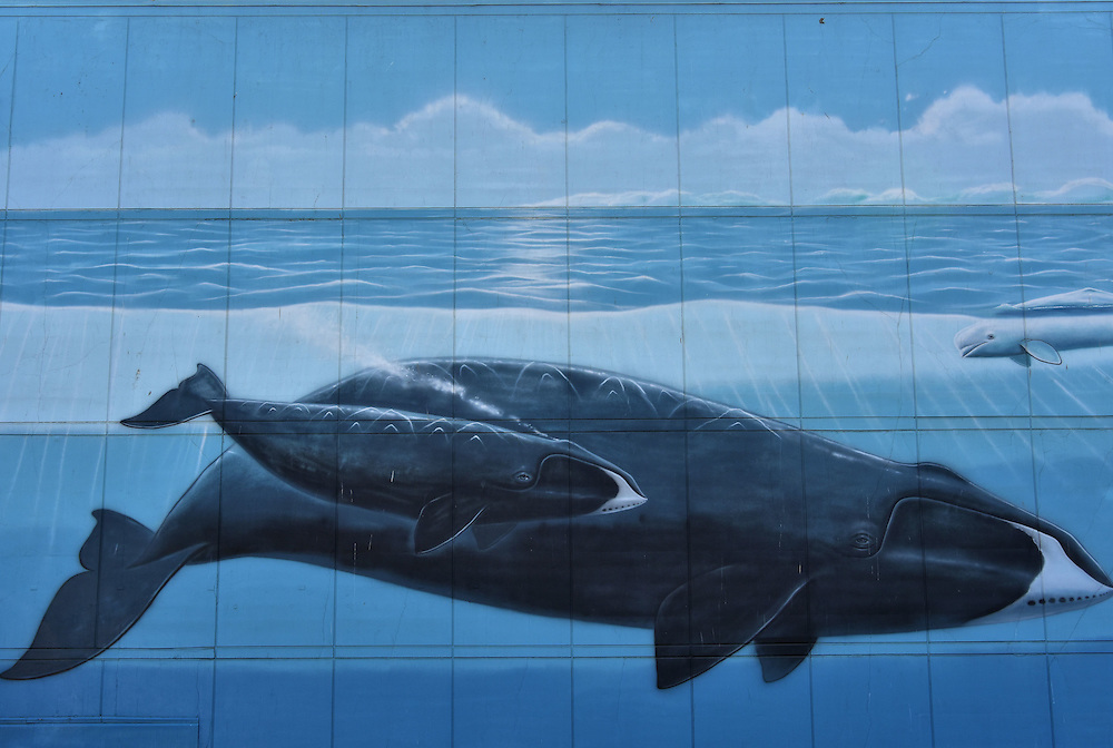 Alaska&rsquo;s Marine Life Mural by Wyland in Ankorage, Alaska<br />