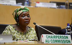 ADDIS ABABA, Jan. 31, 2015  Nkosazana Dlamini-Zuma, Chairperson of the African Union (AU) Commission, attends the final press conference of the 24th AU Summit at the AU Headquarters in Addis Ababa, capital of Ethiopia, on Jan. 31, 2015. The 24th African Union (AU) summit concluded later Saturday with the Adoption of Agenda 2063, a vision and action plan towards prosperous and peaceful Africa.(Xinhua/Zhai Jianlan) (Credit Image: © Zhai Jianlan/Xinhua/ZUMA Wire)