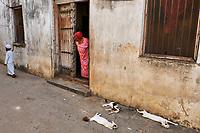 Tanzanie, archipel de Zanzibar, ile de Unguja (Zanzibar), ville de Zanzibar, quartier Stone Town classe patrimoine mondial UNESCO, chat des rues // Tanzania, Zanzibar island, Unguja, Stone Town, unesco world heritage, street cats