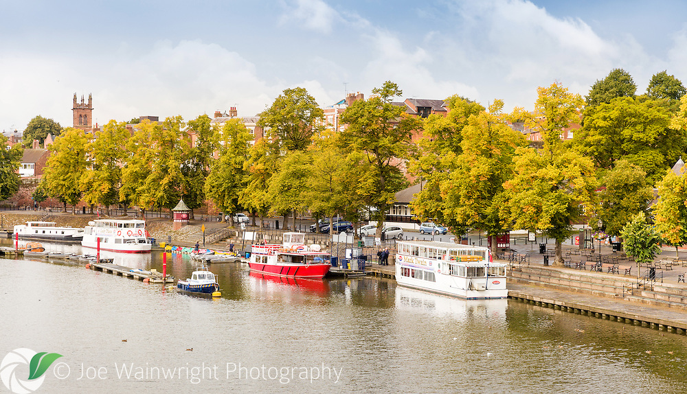 Late August and the leaves of the lime trees in the riverside Groves, Chester, start to show their autumn tones.