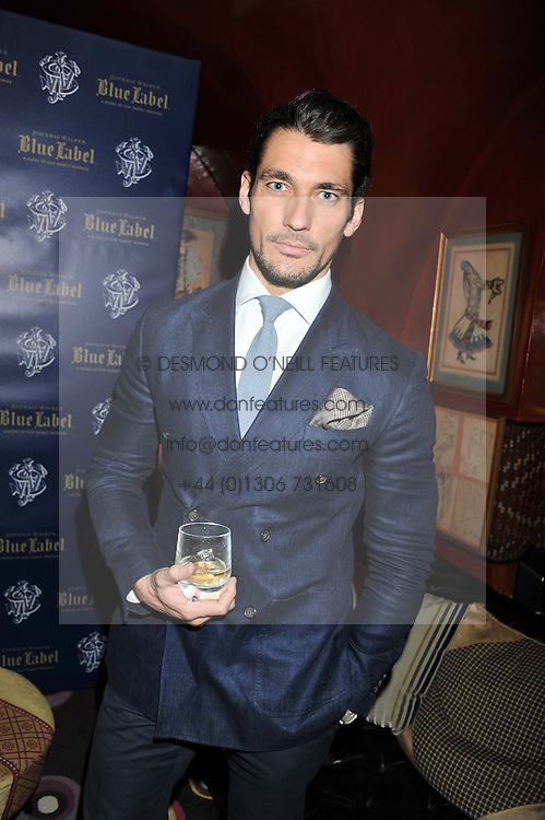 DAVID GANDY at the Johnnie Walker Blue Label and David Gandy partnership launch party held at Annabel's, 44 Berkeley Square, London on 5th February 2013.