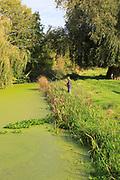 Autumn rural landscape River Deben, Ufford, Suffolk, England, UK with fisherman