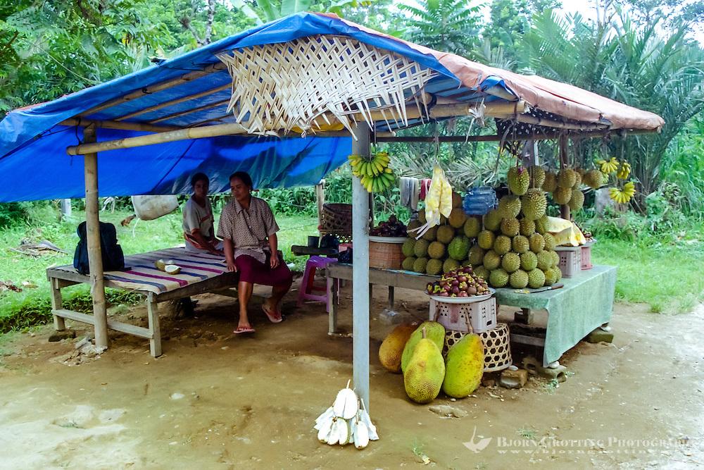 Bali, Tabanan, Bedugul. Selling fruit along the road south of Bedugul.