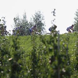 Brainwash Ladiestour Neerijnen de etappe gaat door de frootste fruittuin van Nederland