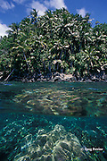 Narage Island, Witu Islands off New Britain, Bismarck Archipelago, Papua New Guinea ( Bismarck Sea / Western Pacific Ocean )