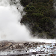 A young boy watches a spectacular geyser at Te Puia, Rotorua. Te Puia is the premier Maori cultural centre in New Zealand - a place of gushing waters, steaming vents, boiling mud pools and spectacular geysers. Te Puia also hosts National Carving and Weaving Schools and  daily maori culture performances including dancing and singing. Rotorua, 9th December 2010 New Zealand.  Photo Tim Clayton