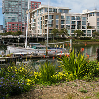 A large Redevelopment  of China Basin mix use of apartments, condos and Business Parks and UCSF. Modern part of San Francisco