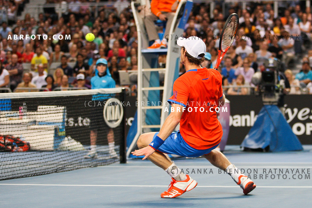 21 January 2012 : Andy Murray (GBR) in his men's singles match against Michael Llodra (FRA) gets down low at the net to play a shot during Day 6 round 3 of the Australian Tennis open grand slam event at Melbourne Park, Melbourne Australia.