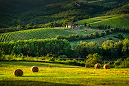 Tuscan hillside with hay on the field