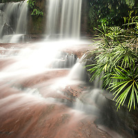 River in Lambir Hills National Park, Sarawak, Borneo