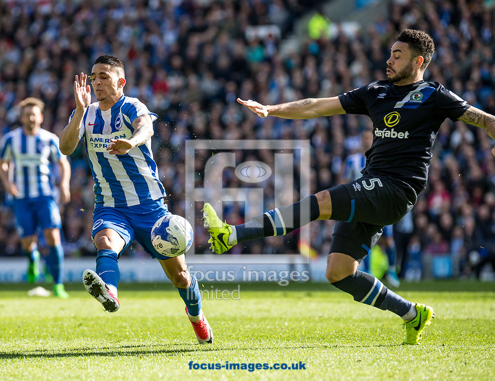 Derrick Williams of Blackburn Rovers and Anthony Knockaert of Brighton &amp; Hove Albion during the Sky Bet Championship match at the American Express Community Stadium, Brighton and Hove<br /> Picture by Liam McAvoy/Focus Images Ltd 07413 543156<br /> 01/04/2017