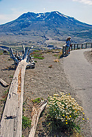Mount St Helens; Washington State; USA; which last erupted in May; 1980. The rocks and uprooted plants from the eruption have deliberately; left where they landed to illustrate the force of the volcanic action. Photo taken from Johnston Ridge Observatory, 200809020903; volcano; lava, crater.<br /> <br /> Copyright Image from Victor Patterson, Belfast, UK<br /> <br /> t: +44 28 9066 1296 (from Rep of Ireland 048 9066 1296)<br /> m: +44 7802 353836<br /> e: victorpattersonbelfast@gmail.com<br /> <br /> www.images4media.com the new website which will ultimately replace  www.victorpatterson.com<br /> <br /> Please see my full Terms and Conditions of Use at https://www.victorpatterson.com/page2<br /> It is IMPORTANT that you familiarise yourself with them.<br /> <br /> Images used on the Internet incur an additional cost and must be visibly watermarked i.e. © Victor Patterson or that of the named photographer within the body of the image. The online image must retain all the original metadata. Any changes must be agreed in writing.<br /> <br /> This image is only available for the use of the download recipient i.e. television station, newspaper, magazine, book publisher, etc, and must not be passed on to a third party. It is also downloaded on condition that each and every usage is notified within 7 days to victorpattersonbelfast@gmail.com.<br /> <br /> The right of Victor Patterson (or the named photographer) to be identified as the author is asserted in accordance with The Copyright Designs And Patents Act (1988). All moral rights are asserted.