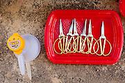 Tray with scissors to cut the ribbon at the ceremony start of works of the Chinese Pavilion at Expo 2015, Rho-Pero, September 4, 2014. &copy; Carlo Cerchioli<br /> <br /> Vassoio con le forbici per tagliare il nastro alla cerimonia di inizio dei lavori del padiglione cinese a Expo 2015, Rho-Pero, 4 settembre 2014.