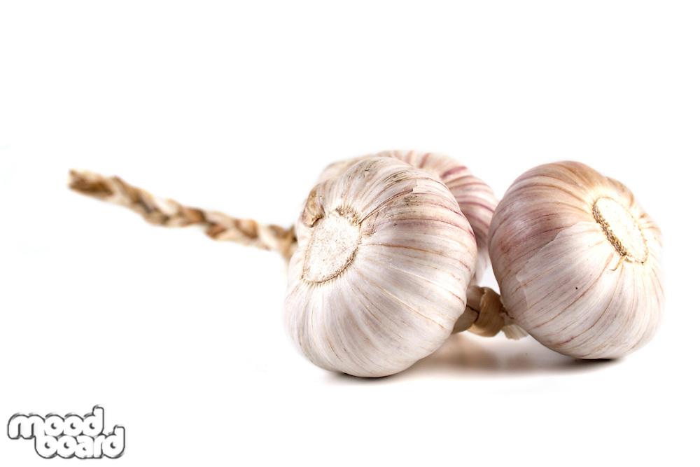 Studio shot of garlic on white background
