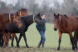 Geert and Trui Baertsoen (BEL)<br /> Haras de la Pomme - Le Pin 2010<br /> © Dirk Caremans