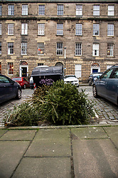 Christmas trees await appropriate disposal in one of Edinburgh's most expensive streets, Scotland Street, in the New Town<br />