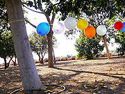 A string of balloons hangs between trees in a park for a child's birthday party