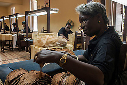 A woman works in the selection process of tobacco leaf during the 18th International Habano Cigar Festival, at the Cohiba tobacco factory, in El Laguito, Havana, Cuba, on March 3, 2016. The 18th International Habano Cigar Festival is held from Feb. 29 to March 4. EXPA Pictures © 2016, PhotoCredit: EXPA/ Photoshot/ Joaquin Hernandez<br />