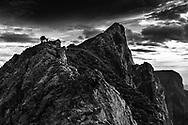 An adult alpine ibex goat (Capra ibex) on a ridge, mount Pilatus, Central Switzerland