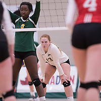 3rd year libero Taylor Ungar (13) of the Regina Cougars in action during Women's Volleyball home game on January 21 at Centre for Kinesiology, Health and Sport. Credit: Arthur Ward/Arthur Images