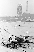 Picking coal at Hickleton Colliery, Thurnscoe. 16/01/1985.