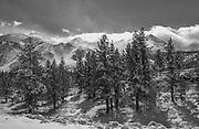 Mammoth Mountain California