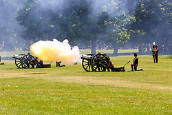 © Licensed to London News Pictures. 03/06/2019. London, UK. Members of the King's Troop Royal Horse Artillery take part in a 82 gun salutes in Green Park, London. 41 gun salutes are fired in the honour of the 3 days State Visit of the President and First Lady of the United States of America to the UK followed by further 41 gun salutes to commemorate the anniversary of the Coronation of Her Majesty The Queen. Photo credit: Dinendra Haria/LNP