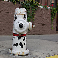 Fire hydrant on West 83rd street between Columbus and Amsterdam Ave, New York City.