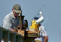 Snowy Egret (Egretta thula),  on the fishing pier, Sanibel Island, Florida, USA   Photo: Peter Llewellyn