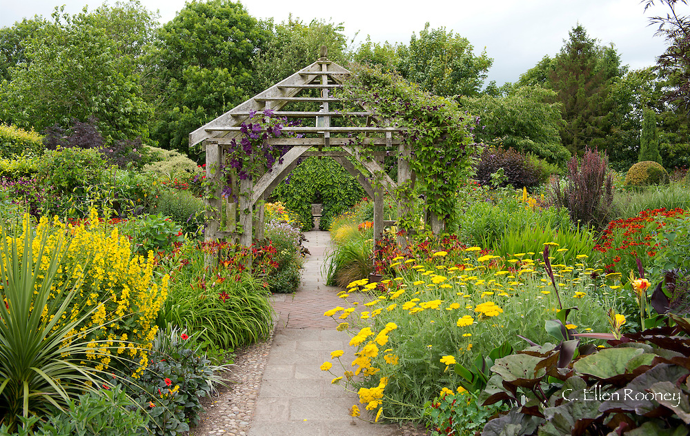 A wooden pergola and hot borders of achillea, hemerocallis, helenium and helianthus in The Lanhydrock garden at Wollerton Old Hall, Wollerton, Market Drayton, Shropshire, UK