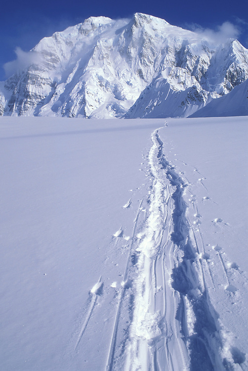 USA, Alaska, Denali National Park, Tracks left by climbing expedition in fresh snow on Kahiltna Glacier on Mount McKinley climb