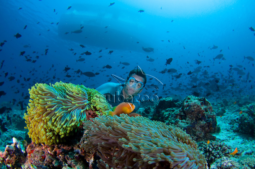 Umberto Pelizzari with Maldives Anemonefish, Amphiprion nigripes, in anemone, Heteractis magnifica, Maaya Thila, South Ari Atoll, Maldives,
