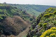 Israel, Golan Heights, Gamla waterfall Nature reserve.