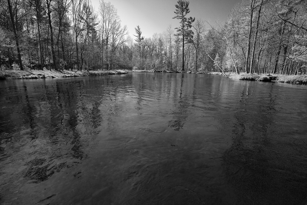 Spring on the Pere Marquette river in Baldwin, Michigan.  The Pere Marquette is designated as a National Scenic River and a Blue Ribbon fishery.