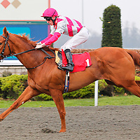 Emulating and Shane Kelly winning the 6.55 race