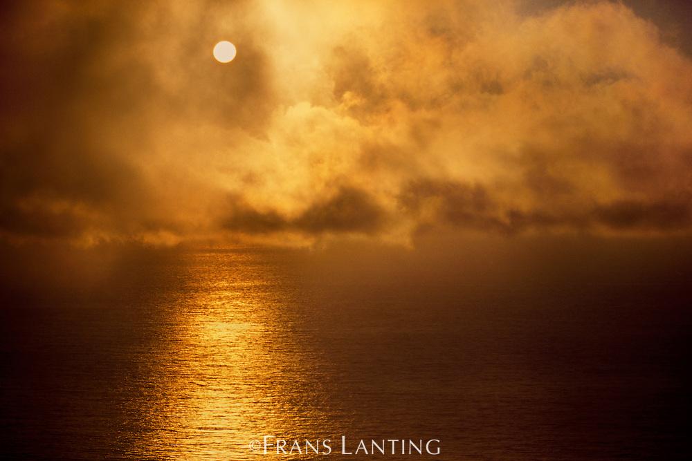 Sun setting through fog (aerial), Big Sur, California