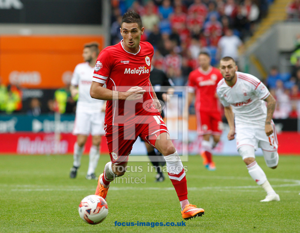 Federico Macheda of Cardiff City during the Sky Bet Championship match at the Cardiff City Stadium, Cardiff<br /> Picture by Mike  Griffiths/Focus Images Ltd +44 7766 223933<br /> 18/10/2014