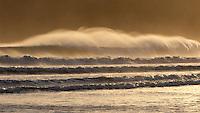 Pedasi es un corregimiento y ciudad cabecera del distrito de Pedas&iacute; en la provincia de Los Santos, Rep&uacute;blica de Panam&aacute;. La ciudad est&aacute; situada en el extremo sur-oriental de la pen&iacute;nsula de Azuero, en la costa del Pac&iacute;fico,1 siendo principalmente un pueblo de pescadores con una poblaci&oacute;n de alrededor de 2.150 personas.<br /> <br /> Pedas&iacute; es conocido tambi&eacute;n por alegres carnavales anuales, playas v&iacute;rgenes, y actividades como la pesca deportiva, el buceo y el surf, as&iacute; como su proximidad a algunos de los parques nacionales de Panam&aacute;. La pr&aacute;ctica de surf es frecuente en la famosa Playa Venao.<br /> <br /> &copy;Alejandro Balaguer/ Fundacion Albatros Media