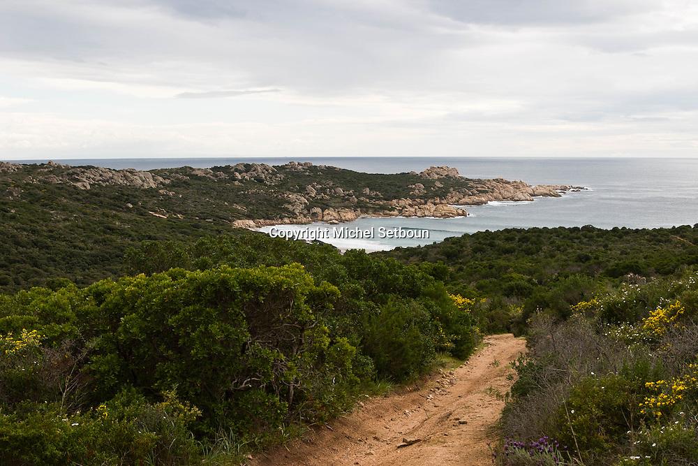 Corsica. France. Silver beach, horse riding Corsica south  France   / plage d'argent sud corse, randonnee equestre tourisme a cheval Corse du sud  France