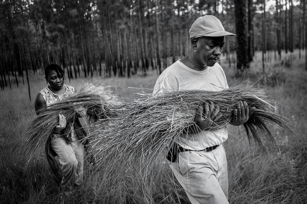 Darryl Stoneworth and his wife Angela carry the sweetgrass they harvested at the Okeetee Hunt Club near Hardeeville, South Carolina. With all of the traditional areas to harvest the grass in Mt. Pleasant now shut off to the Gullah due to the development of shopping centers and private residential communities, Stoneworth travels the 90 miles south to Hardeeville a few times each week during the month of July to pull the grass. The hunt club is closed for about a month during the summer and the management allows the Gullah to pull the grass at that time at no charge.