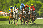 2015 Iroquois Steeplechase at Edwin Warner Park in Nashville, TN