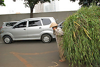 A man, bare feet, carries a load of long grass in Central Jakarta, Indonesia.<br />